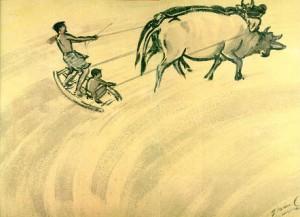 zainul ploughing