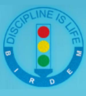 birdem logo